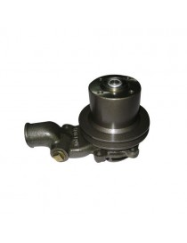 Pompe à eau avec poulie Massey Ferguson Renault 3637411M91